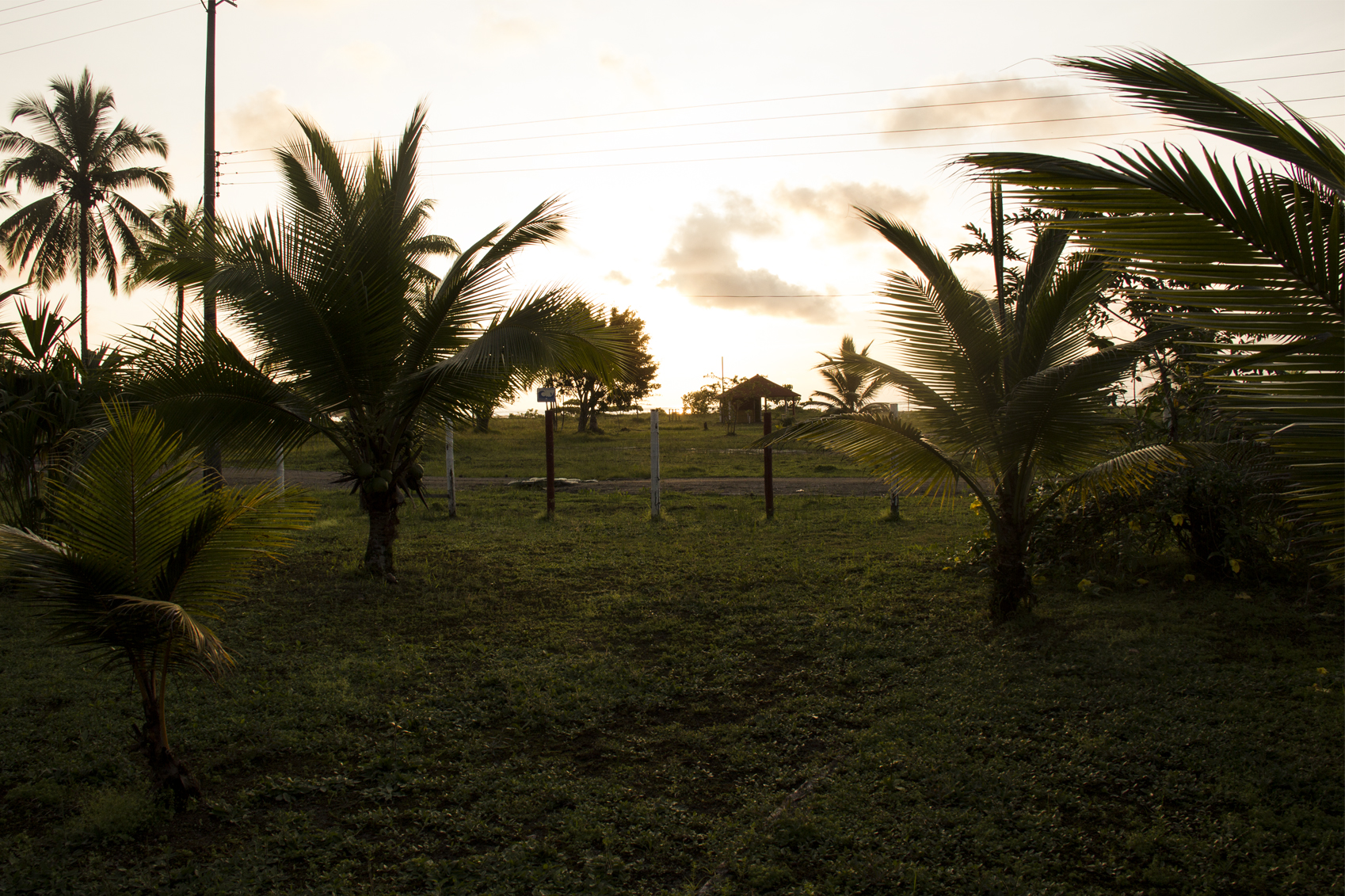 Región de Orinoquía obtiene beneficios tras la visita del MinAgricultura.