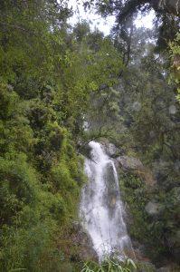 Cascada en Peulla- Sur de Chile