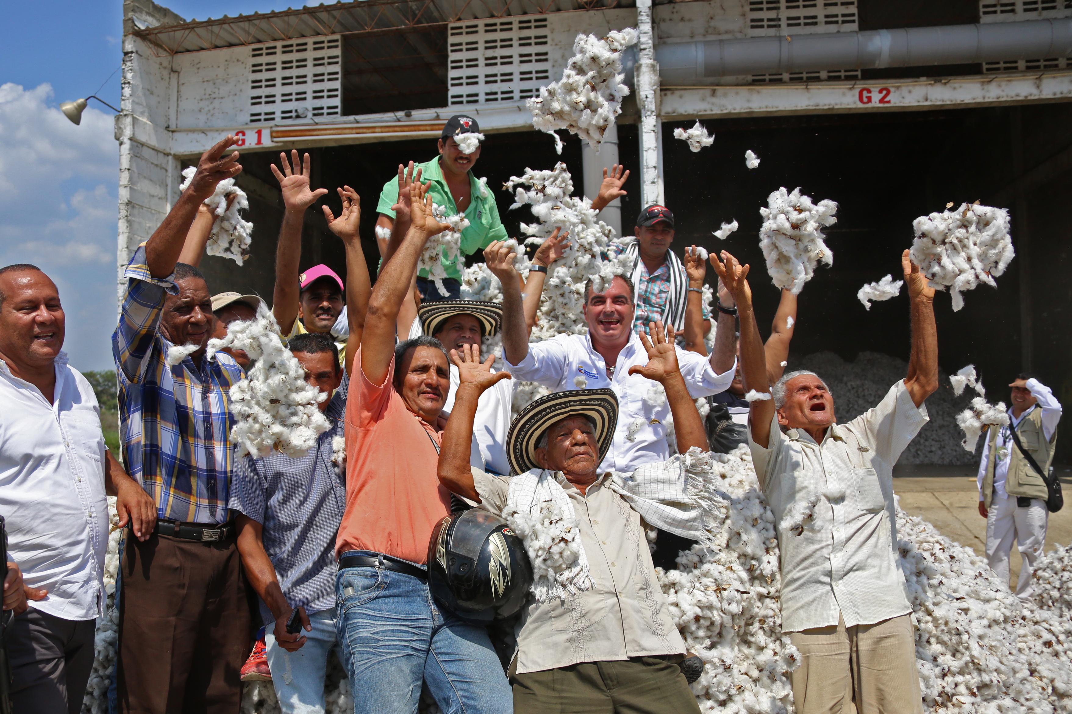 Agricultura familiar y recuperación del cultivo del algodón, adelantará MinAgricultura en Córdoba