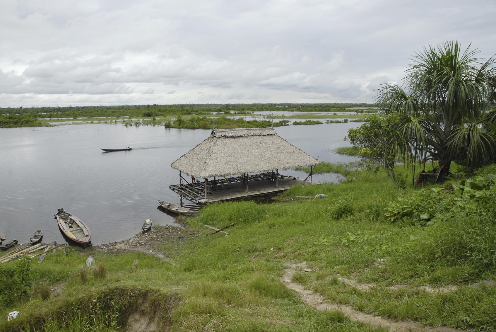 Proyectos productivos serán vitales en el Amazonas