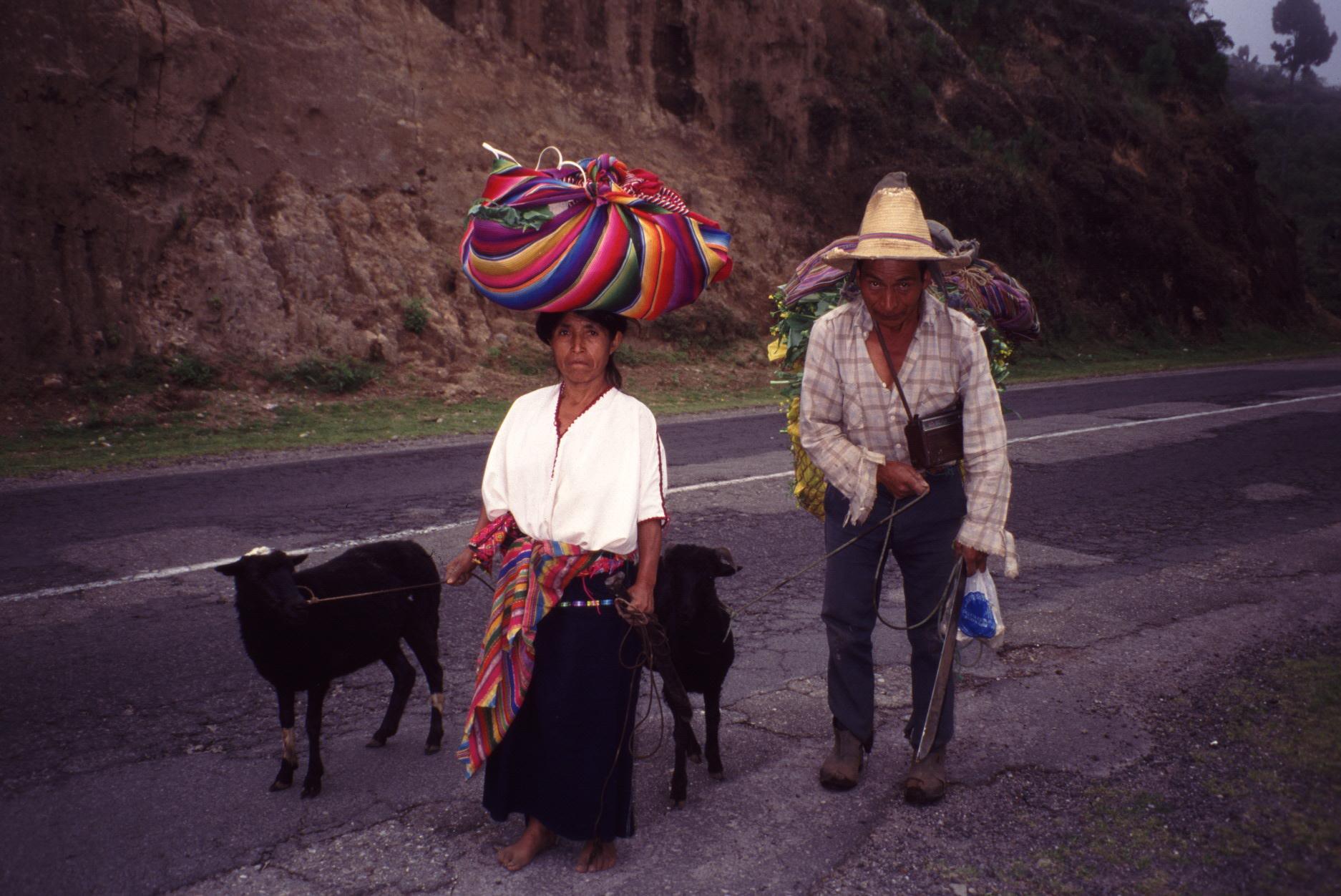 Campesinos no son reconocidos por el Plan Nacional de Desarrollo
