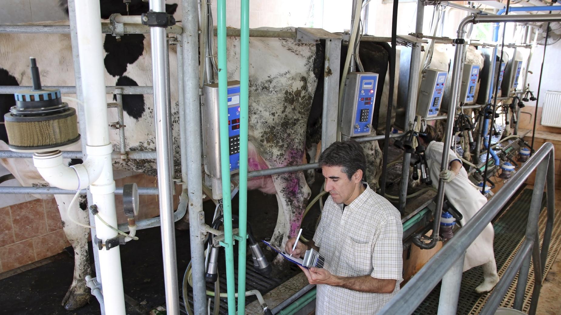 Precio de la leche al productor será estudiado
