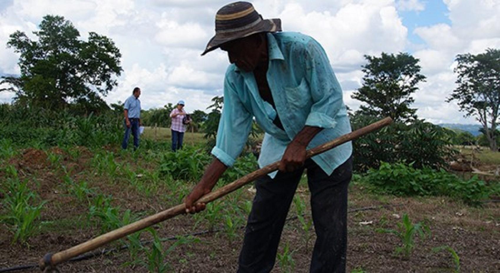 Restitución de tierras entre el perdón y la impunidad
