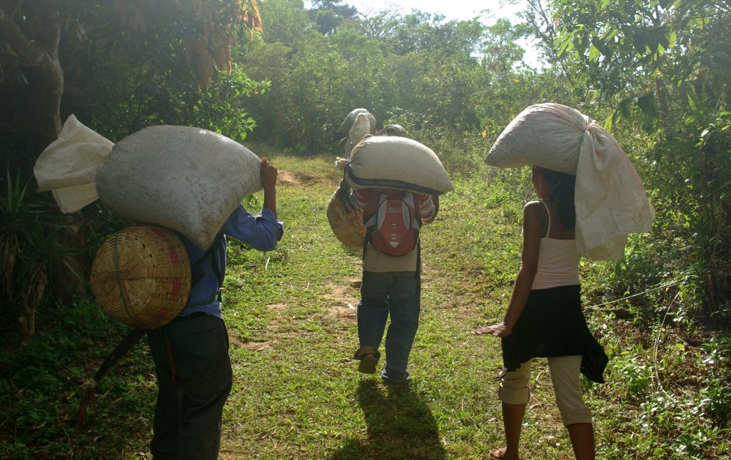 Víctimas en el exterior y restitución de tierras