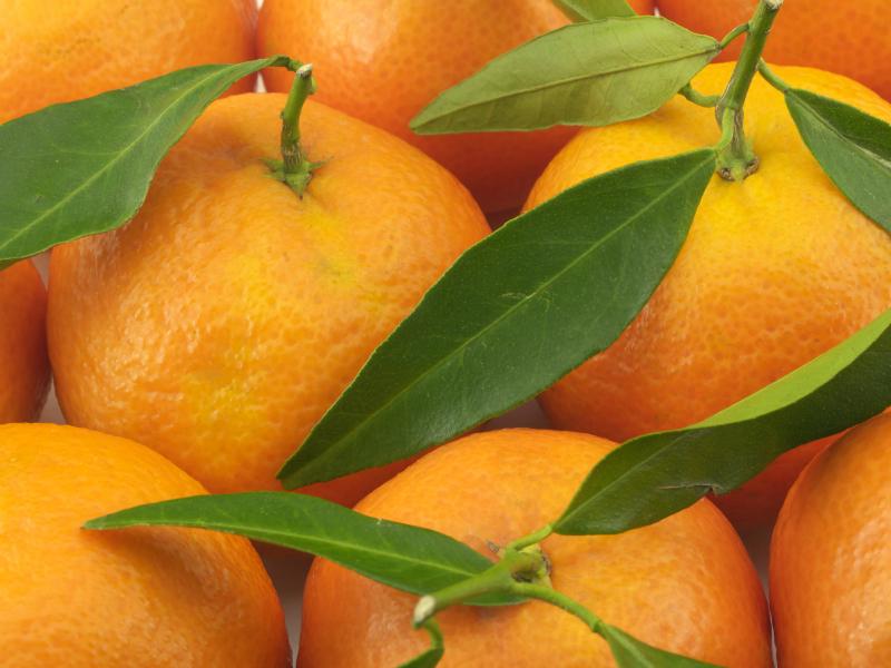 Cáscara de Naranja, un gelificante para alimentos