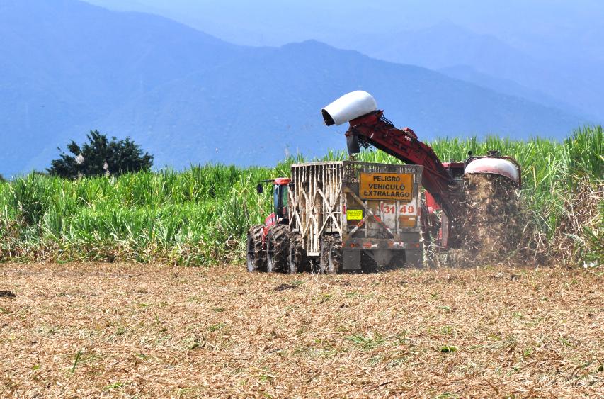 Incoder realizará el seminario Internacional de Desarrollo Rural