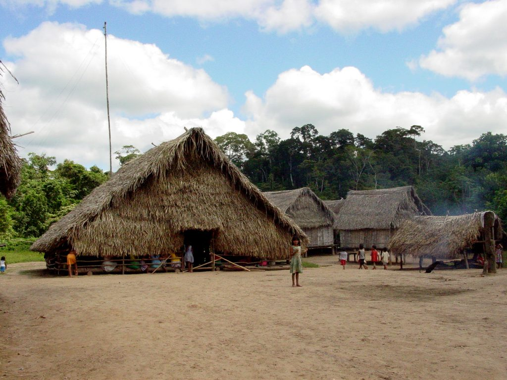 Las FARC tienen rodeado el andén Pacifico Chocoano