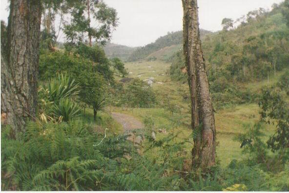Cerrado el Parque Nacional Isla Salamanca