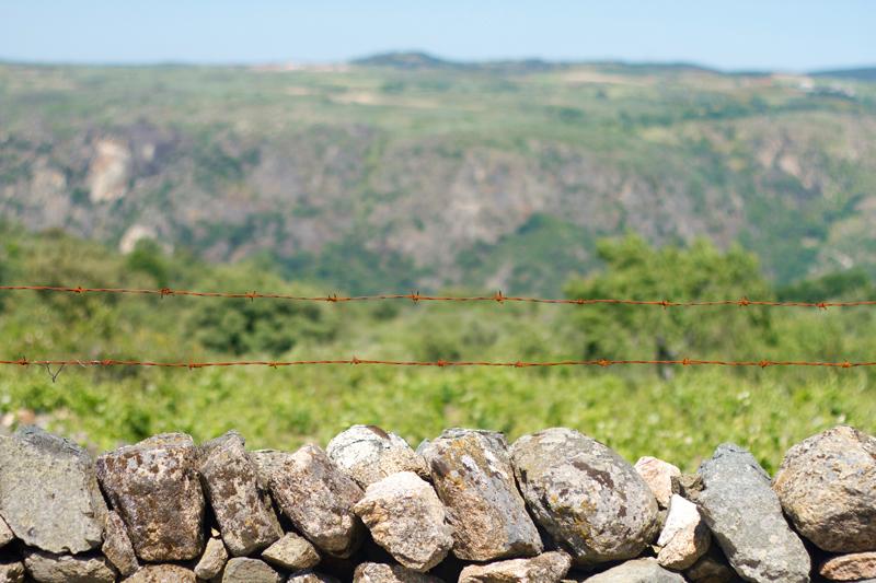 La Mesa está dejando la agricultura por el turismo