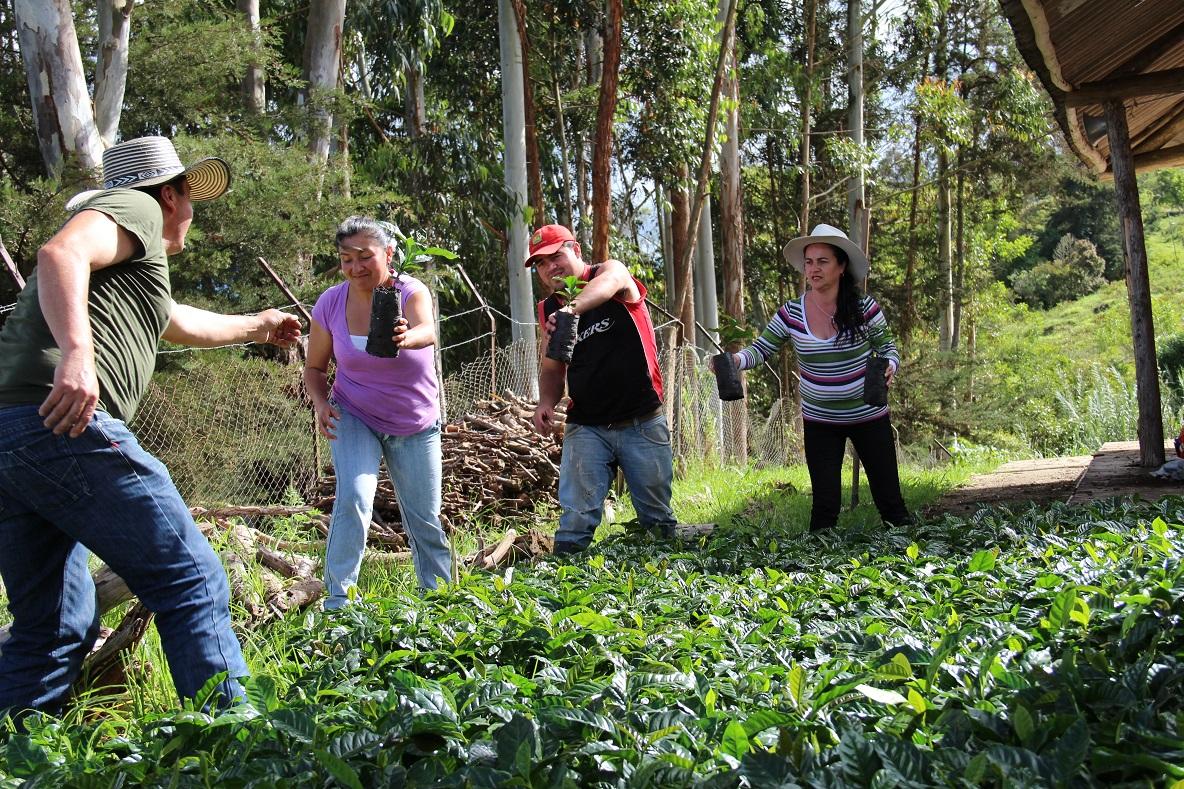 FAO califica a la agricultura familiar como la clave contra el hambre