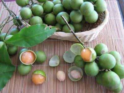 Mamoncillo: beneficios y receta dulce