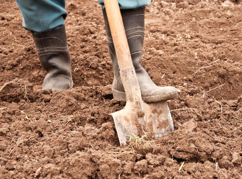 Plantillas que protegen de minas antipersona