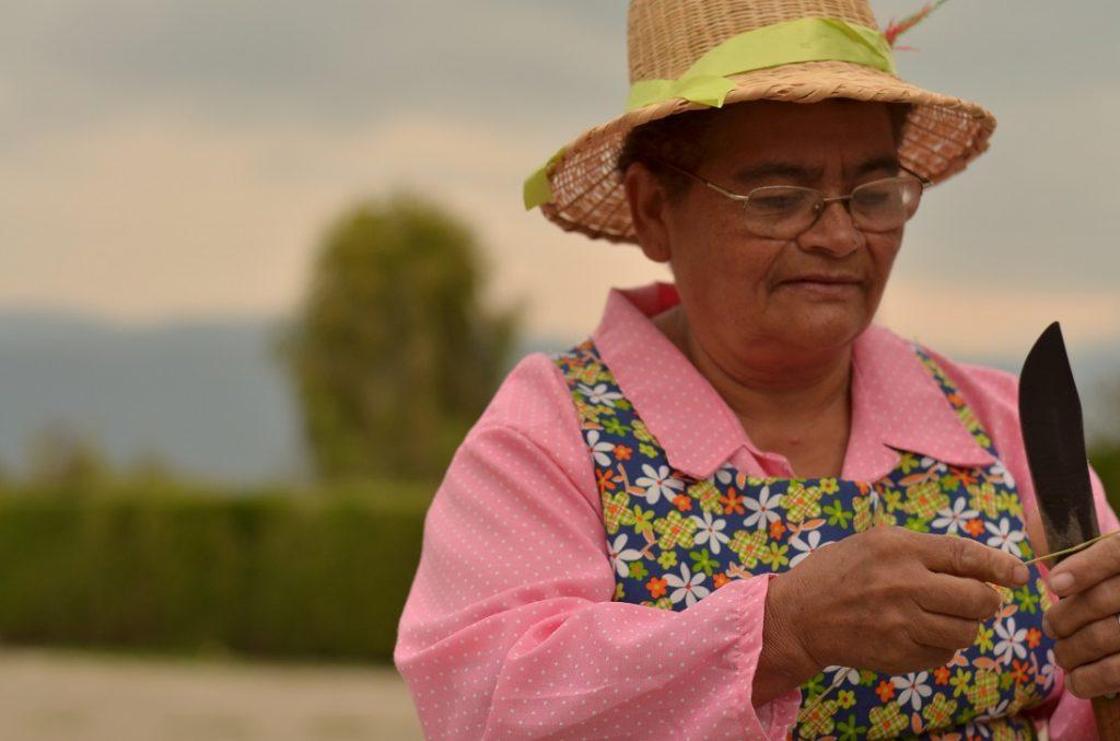 Dirección para mujer rural aprobada en el Congreso