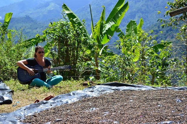 Una alemana que cultiva café orgánico en las montañas del Quindío – Segunda parte-