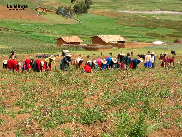 Minga pedagógica del Valle del Cauca