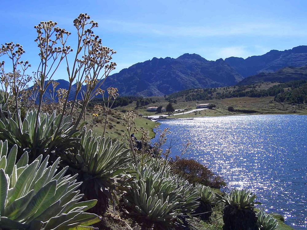 Organizaciones  del país advierten a Ramsar que Colombia incumple protección de páramos