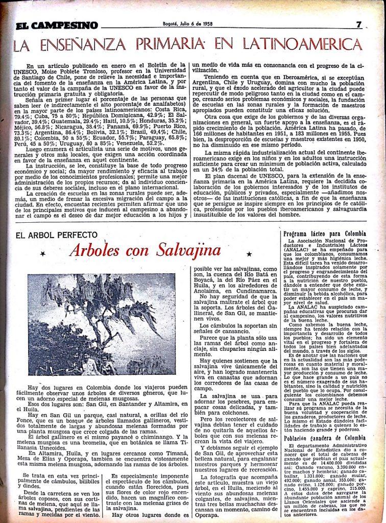 Pagina 27 (1)