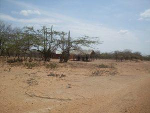Programa piloto de inclusión social y productiva para el Desarrollo Rural con Enfoque Territorial en las zonas rurales de la Alta Guajira