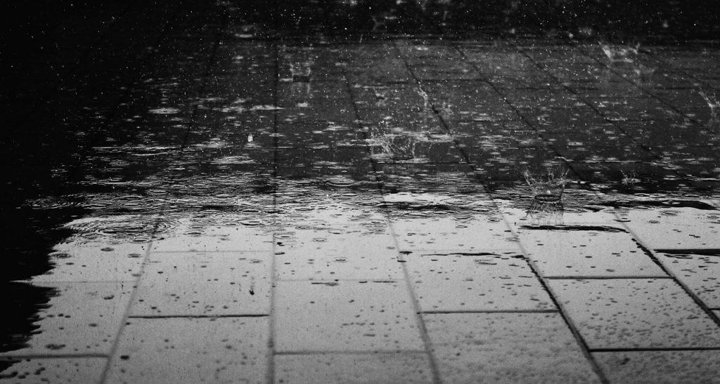 Chocontá y Suesca registran afectación en sus cultivos por fuertes lluvias