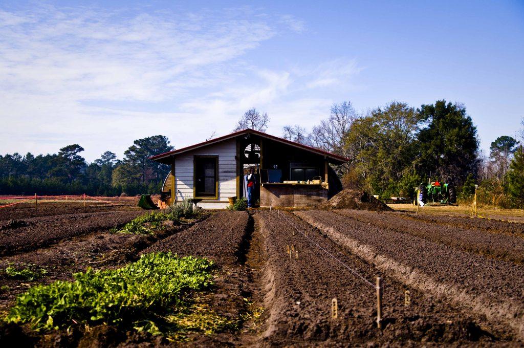 Agéndese: Foro Internacional  de Agricultura Competitiva siglo XXI