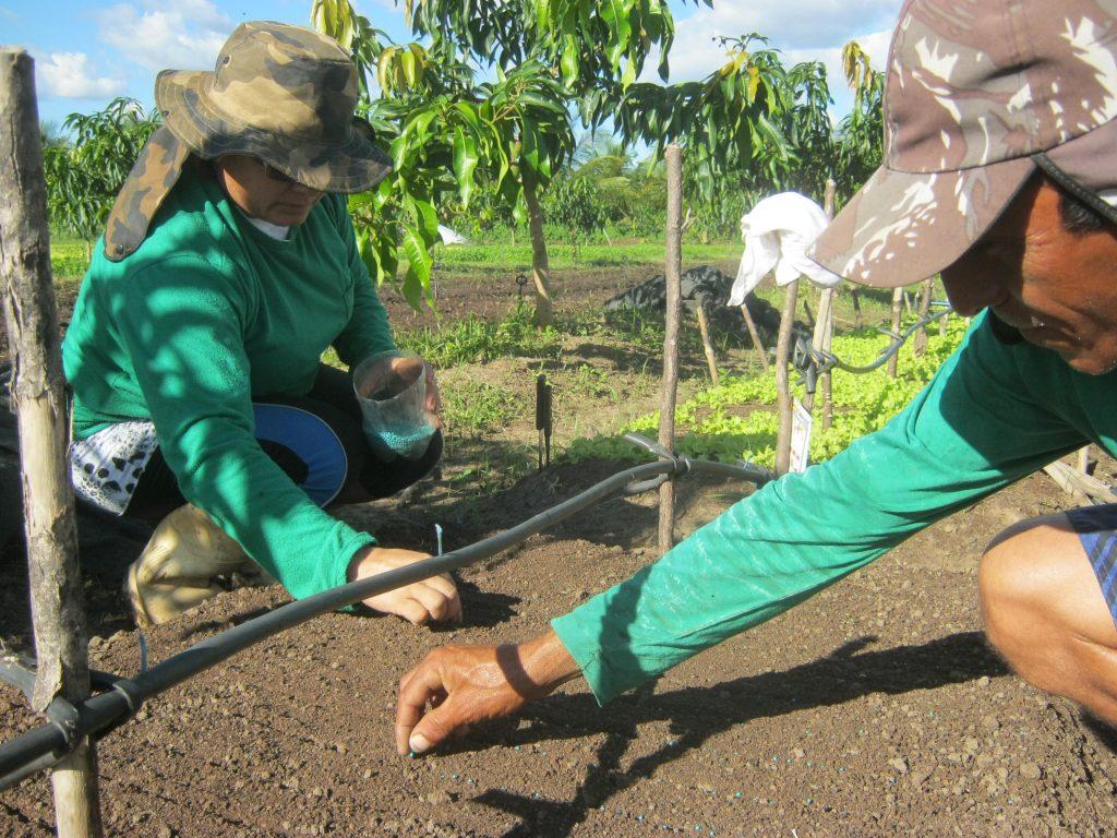 Abiertas las inscripciones para taller sobre agricultura familiar en Caquetá