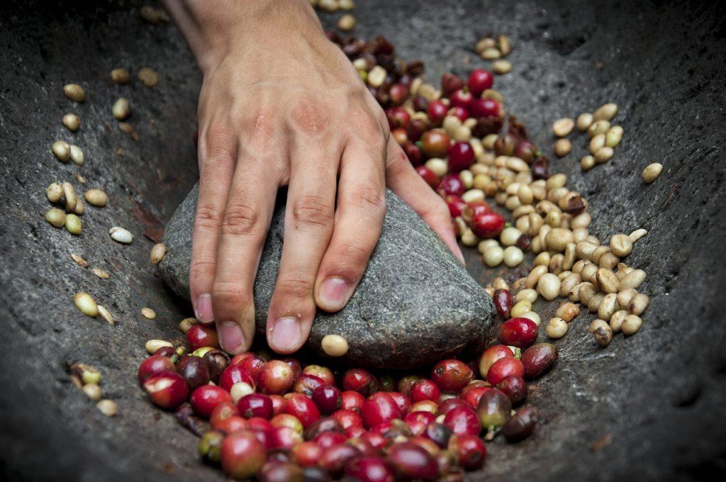 El primero de octubre será ahora el Día Internacional del Café