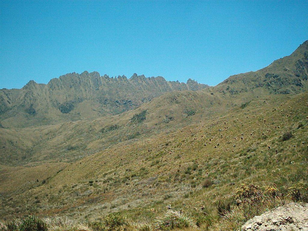 Cerro el serruccho, páramo del Meridiano Occidente del Tolima