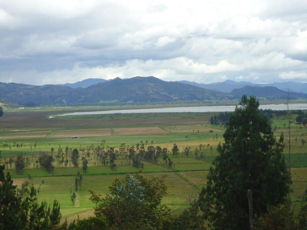 La ganadería y algunos cultivos le han ido quitando vida a la laguna. El municipio de Chiquinquirá, capital de la provincia de Furatena, tiene serios problemas de abastecimiento de agua.
