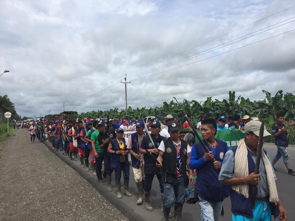 Foto: Organización indígena de Antioquia. 2 mil campesinos llegaron al municipio de Apartadó.
