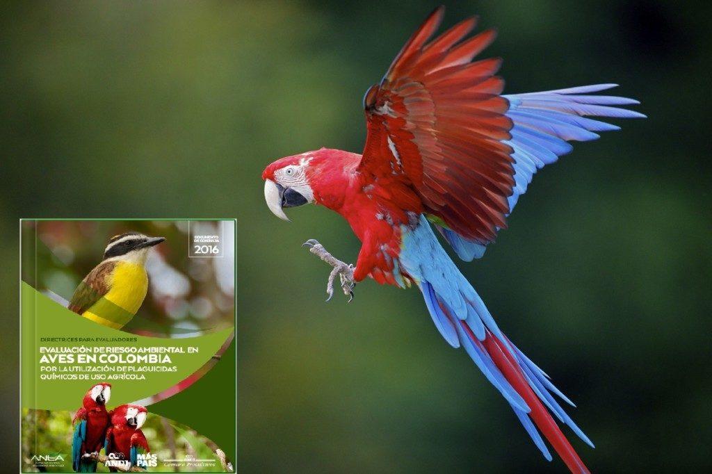 Documento para la evaluación de riesgos ambientales en aves