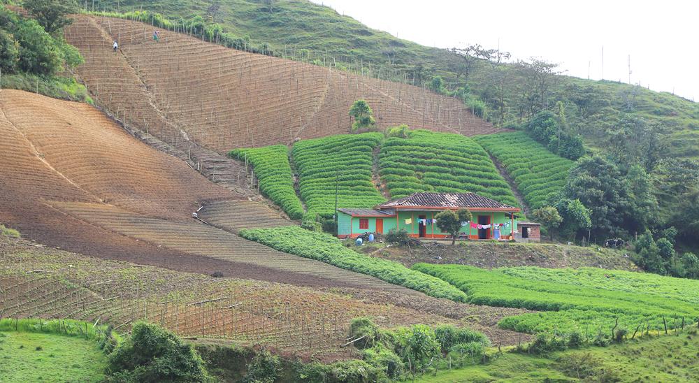Tierras Rurales